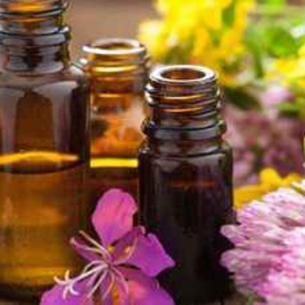 Adventure in Essential Oils