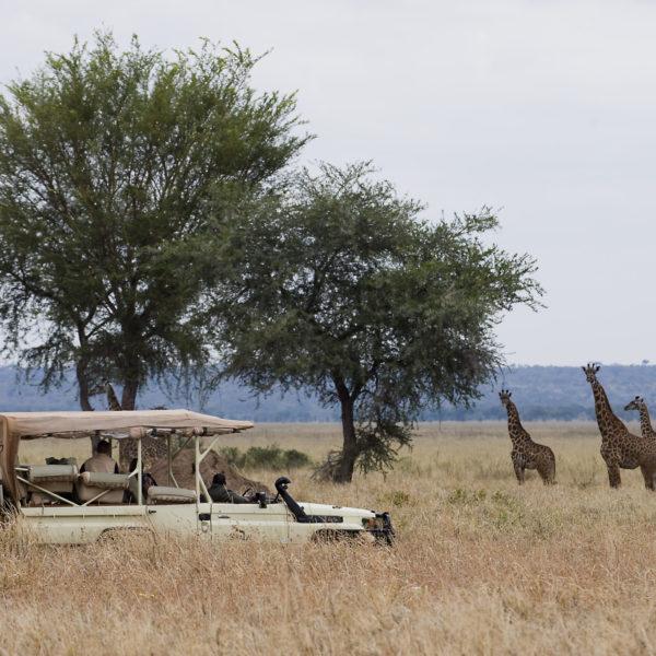 THE TANZANIA EXPERIENCE