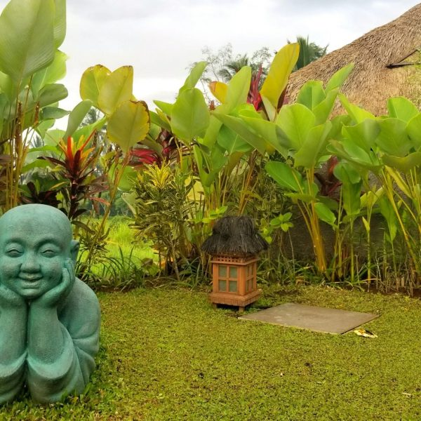 THE BALI EXPERIENCE